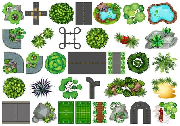 Collection d'objets sur le thème de la nature en plein air et d'éléments végétaux