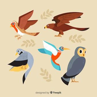 Collection d'oiseaux automne dessinés à la main