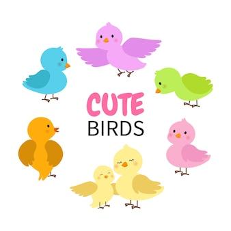 Collection d'oiseaux colorés mignons