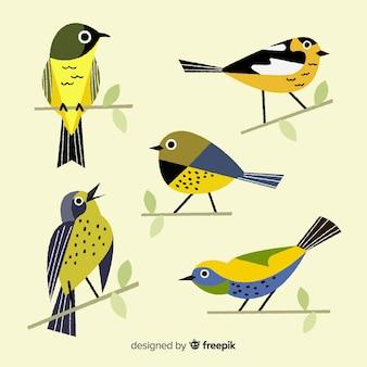 Collection D'oiseaux Dessinés à La Main Vecteur Premium