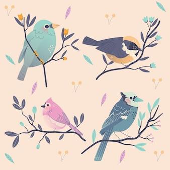 Collection d'oiseaux dessinés à la main