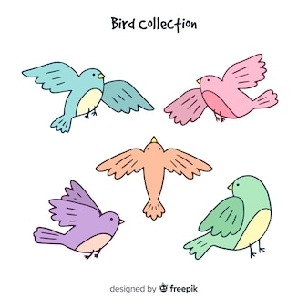 Collection d'oiseaux
