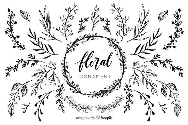 Collection d'ornements floraux dessinés à la main