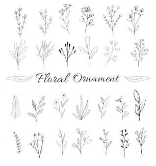 Collection d'ornements floraux féminins pour carte de mariage