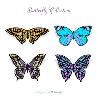 Collection de papillons plats