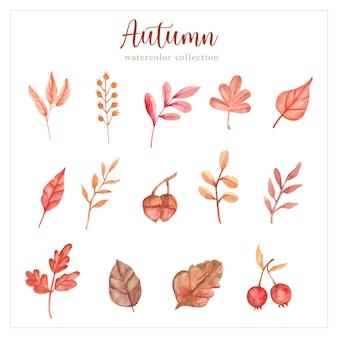 Collection de peinture à la main en forme de feuille d'automne