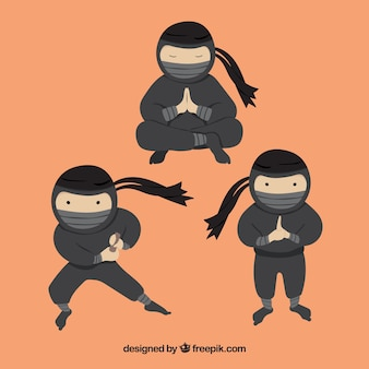 Collection de personnages ninja