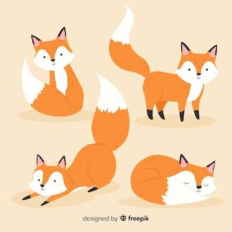 Collection de petits renards mignons