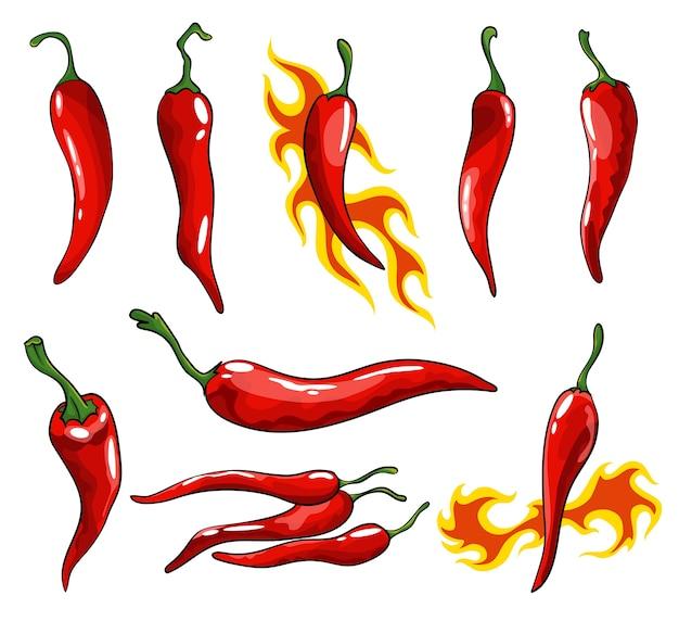Collection de piments dessinés à la main. piments rouges super chauds.