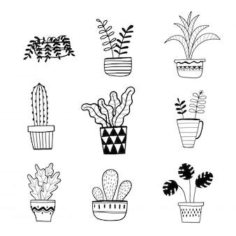 Collection de plantes dessinées à la main dans un pot.