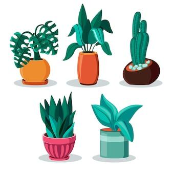 Collection de plantes d'intérieur design plat organique