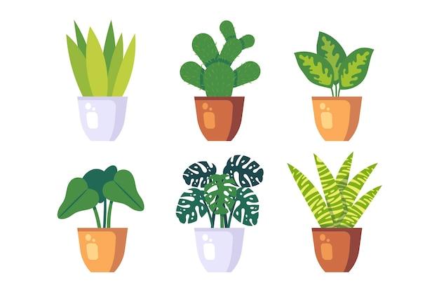 Collection de plantes d'intérieur plates