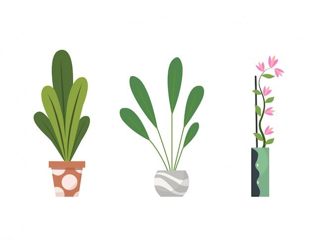 Collection de plantes d'intérieur en pot. plantes décoratives et feuillues pour la maison dans un style plat. éléments isolés sur fond blanc