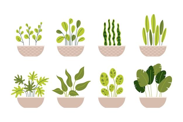 Collection de plantes en pot de jardin intérieur de maison de décoration différente