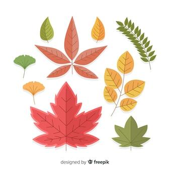 Collection plate de feuilles d'automne