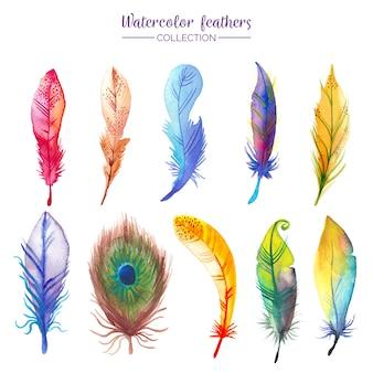 Collection de plumes d'aquarelle