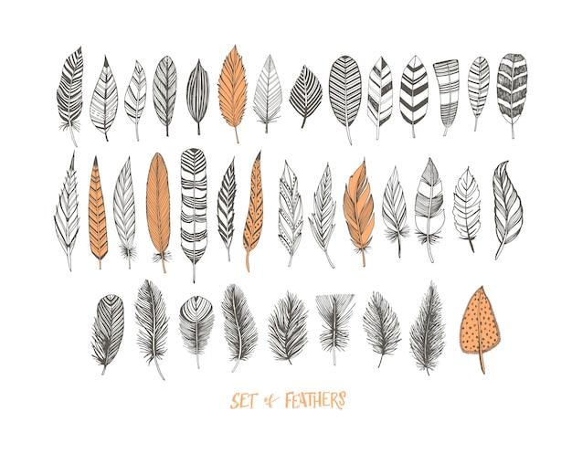 Collection de plumes décoratives dessinées à la main.