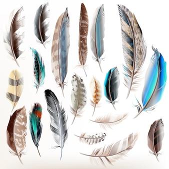 Collection de plumes décoratives