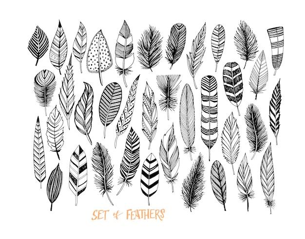 Collection de plumes dessinées à la main.