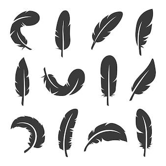 Collection de plumes douces noires