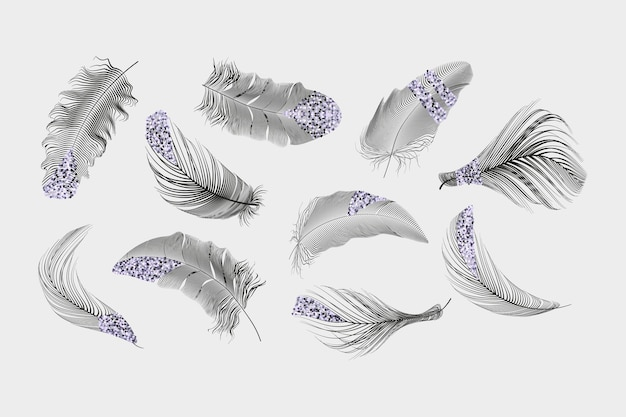 Collection de plumes d'or, rose, argent sur fond blanc.