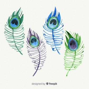 Collection de plumes de paon dessinées à la main moderne