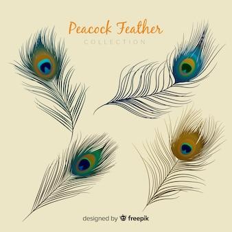 Collection de plumes de paon moderne avec un design réaliste