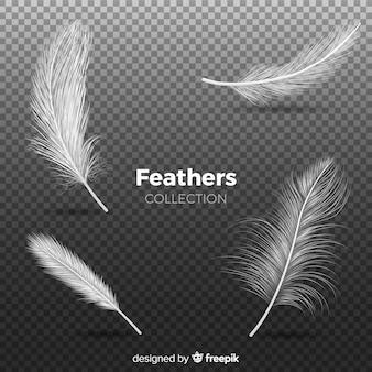 Collection de plumes réalistes