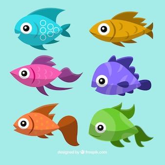 Collection de poissons colorés avec des visages heureux