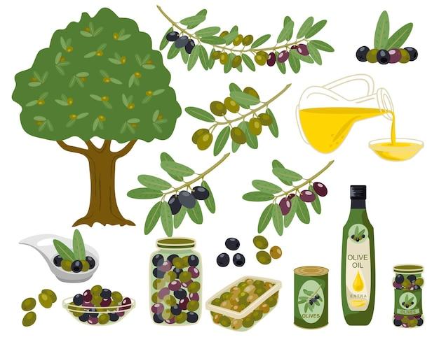 Collection de produits d'olive.