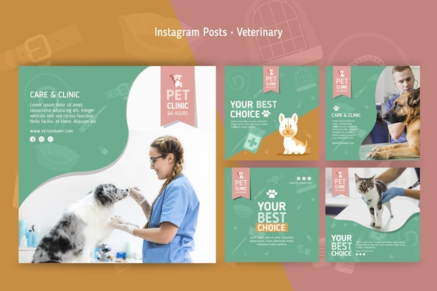 Collection de publications instagram pour vétérinaire