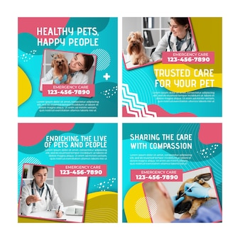 Collection de publications instagram vétérinaire