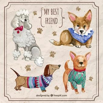 Collection de race de chien d'aquarelle avec des maillots