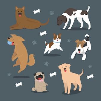 Collection de races de chien de dessin animé de vecteur