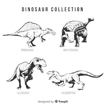 Collection réaliste de dinosaures dessinés à la main