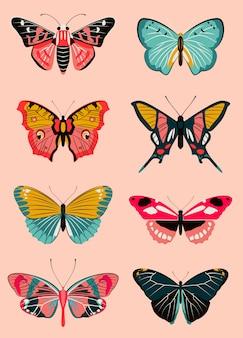 Collection réaliste de papillons et de mites