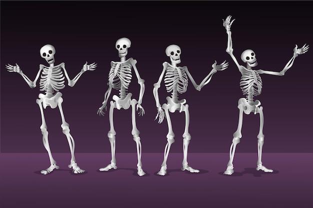 Collection réaliste de squelettes d'halloween