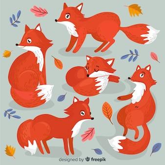 Collection de renards dessinés à la main