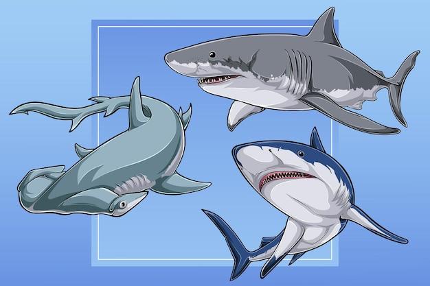 Collection de requins dessinés à la main et tête de marteau festonnée