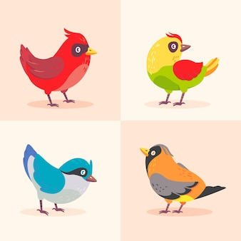 Collection de robin coloré design plat