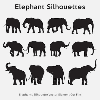 Collection silhouette d'éléphants