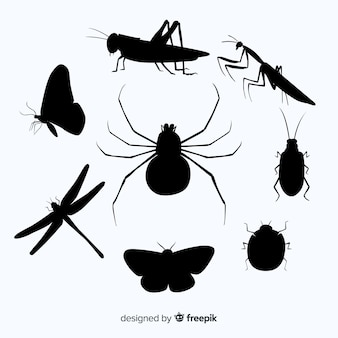 Collection de silhouette d'insecte plat