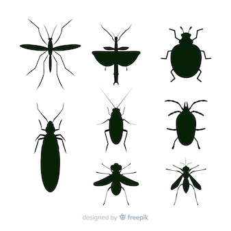 Collection de silhouettes d'insectes noirs