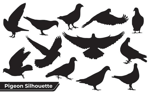 Collection de silhouettes de pigeons dans différentes positions