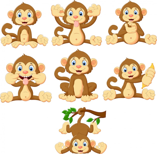 Collection de singes de dessin animé