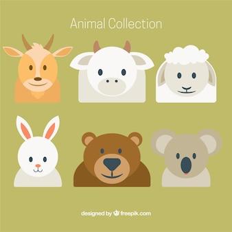 Collection de six animaux plats