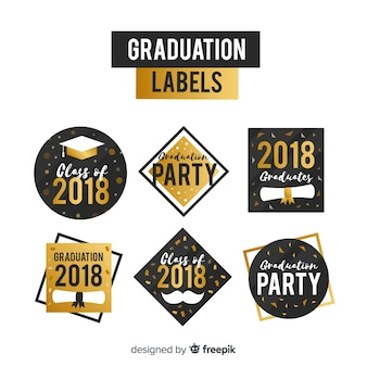 Collection de six badges de graduation