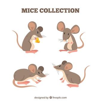 Collection de souris plat avec des poses différentes