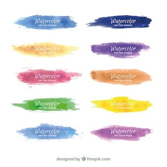 Collection de traits aquarelle