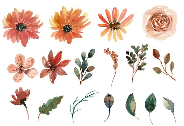Collection de vecteur floral aquarelle orange et crème